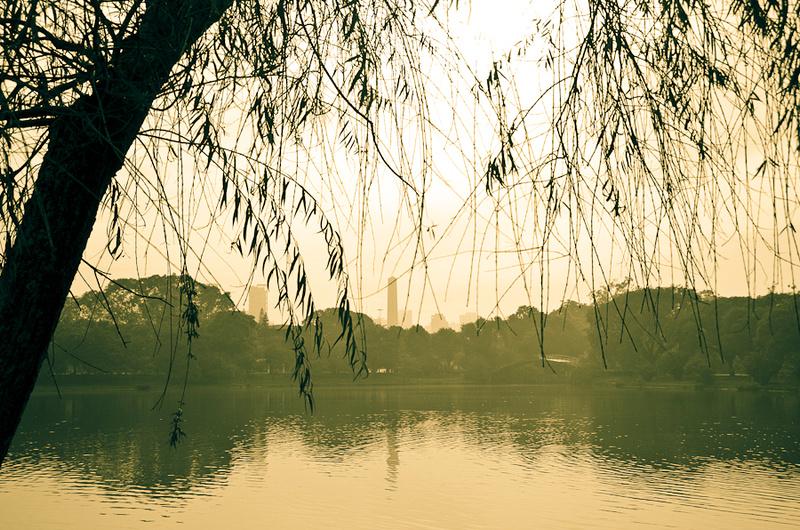 Ibirapuera Park, SP